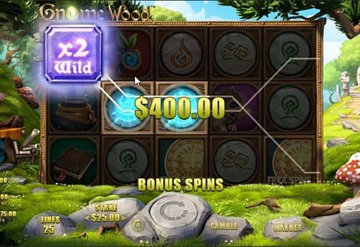 Призовая комбинация в игровом автомате Gnome Wood