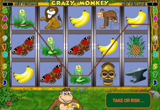 Игровые автоматы онлайн с выводом денег Crazy Monkey